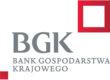 bgk_mini2